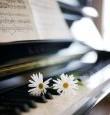 Vendredi 20 juin 2014 à 20h30 : le concert de l'été Entrée libre avec un ensemble de concertistes internationaux issus d'orchestres et de conservatoires prestigieux: Louise Sibourd, Masha Sharova, Jonathan […]