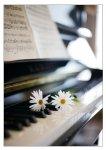 Image_piano_fleur-b44fc