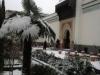 Jardin1  Mosquée de Paris