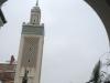 Le Minaret Mosquée de Paris