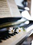 Piano_et_fleur-ad2bc